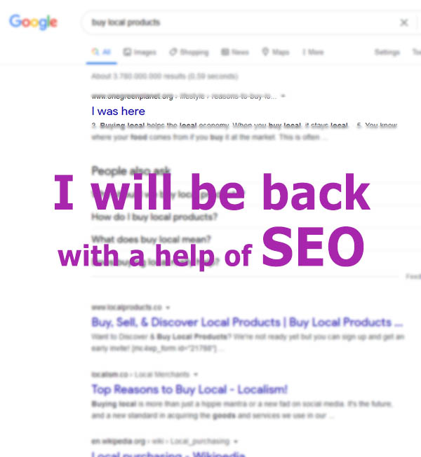 SEO expert for help you improve the ranking on google